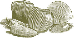 Woodcut Vegetable Still Life Stock Photo