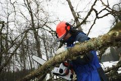 woodcutter действия Стоковые Фотографии RF