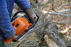 Woodcutter Royalty Free Stock Photo