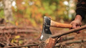 Woodcutter stock footage