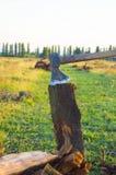 woodcutter Стоковые Изображения RF
