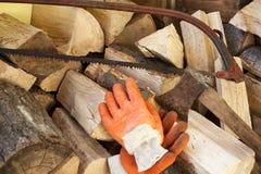 woodcutter Foto de archivo