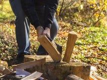 woodcutter Immagini Stock Libere da Diritti