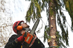 Woodcutter Royalty Free Stock Images