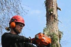 Woodcutter Stock Photo