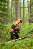 Woodcutter cuts the branches cut tree chainsaw Stock Photo