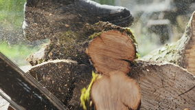 The Woodcutter Cuts Off a Small Tree Trunk. Slow Motion stock video