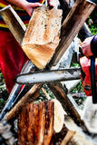 Woodcutter cutting a tree for firewood Royalty Free Stock Photo