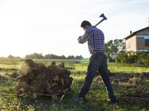Woodcutter. Farmer cuts wood with his strong axe Stock Images