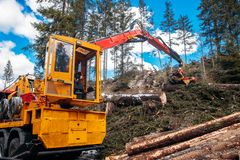 Woodcutter log truck tree harvester working in forest. Concept industry cut wood.  stock photography
