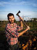 Woodcutter at work. Lumberman cuts wood with his strong axe Royalty Free Stock Images