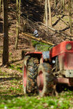 Woodcutters using a logging tractor with winch Stock Images