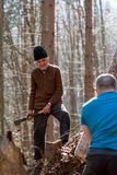 woodcutters working Royalty Free Stock Image