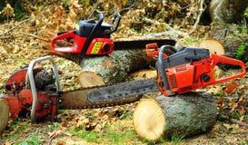 Woodcutting sérieux Photographie stock libre de droits