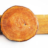 Woodden annual growth ring Stock Photo