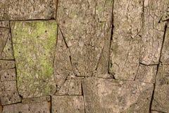 Woode pattern texture Stock Photos