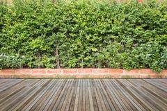 Woodecking oder Bodenbelag und Anlage im Garten dekorativ lizenzfreie stockfotografie