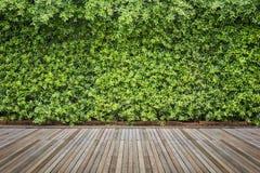Woodecking oder Bodenbelag und Anlage im Garten dekorativ stockbilder