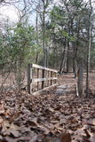 Wooded Bridge. This bridge hasn`t been used in years, now it just rots Stock Images