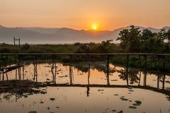 Wooded bridge in the lake sunrise. Stock Photography
