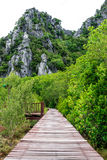 Wooded bridge. Wooden bridge in park Thailand Royalty Free Stock Photo