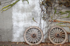 Wooded cart wagon wheel. Antique and weathered wood cart wheel with vine leaves Stock Photos