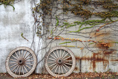 Wagon wheel. Antique and weathered wood cart wheel with vine leaves Royalty Free Stock Photo
