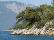 Wooded cliff into the sea - seascape Royalty Free Stock Image