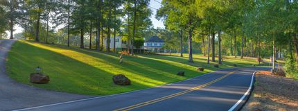 Wooded Country Road. Beautiful Country Road Panoramic in Early Morning Sunshine Royalty Free Stock Image