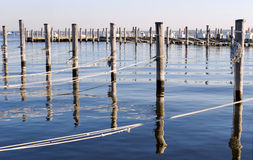 Wooded Dock Poles And Ropes Horizontal Royalty Free Stock Image