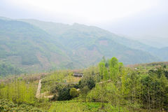 Wooded farmhouse at foot of mountain in foggy spring. Wooded farmhouse at the foot of verdant mountain in foggy spring,Chongzhou,Sichuan Prov.,China royalty free stock photo