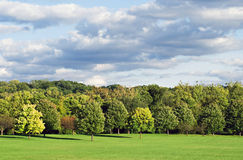 Wooded Field with Cloudscape Stock Photos