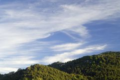 Wooded hills. In Santo Domingo Mountains, zaragoza, Aragon, Spain royalty free stock photo