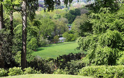 Wooded hillside in thr Thames Valley Stock Image