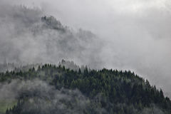 Wooded mountain ridges in the Austrian Alps party obscured by mist Stock Photography