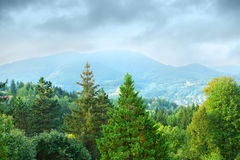 Wooded mountains. View of wooded mountains in Czech Republic stock image