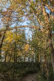 A wooded path in Bloomington, Minnesota. In Autumn Stock Photography