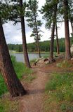 Wooded Path by a Lake. Path through the woods by Sylvan Lake in South Dakota Stock Photos