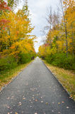 Wooded Paved Path. Pedestrian and Cycle Wooded Path in Autumn. Gorgeous  Fall Colors in the Berkshires, Massachusetts Royalty Free Stock Images