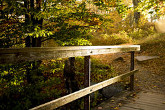 Wooded railing on path in the sunlight. On a autumn sunny day Stock Image