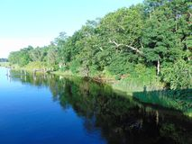 Wooded Riverbank. Reflected in the water on a bright, sunny day royalty free stock photography