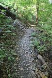 Wooded Rocky Trail in Pennsylvania royalty free stock image