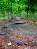 Wooded Trail. A trail going to the top of Kennesaw mountain royalty free stock image
