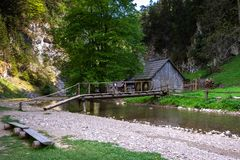 Woodel mill, pure nature, West Tatras, Slovakia stock images