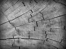 Wooden Abstract. A cracked wooden stump in black and white stock photo