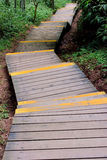 Wooden access in forest. Wooden path and stage in forest, shown as channel, flow, access and approach Stock Photo
