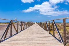 Wooden access to the Matorral beach Stock Image