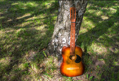 Wooden Acoustic Guitar near the tree Stock Photography