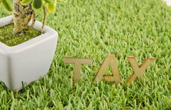 Wooden alphabetical TAX word on artificial green grass Stock Photo