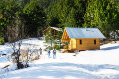 Wooden alpine chalet, snow, green pine trees, tourists Stock Image